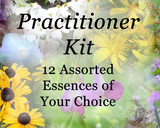 Practitioner Kit - 12 Individual Essences of your choice