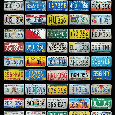 50 State Poster 356 License Plate