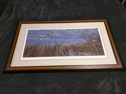 Tails From The Blind Scot Storm Signed Numbered Print Framed 37x22 Ducks Unlimited