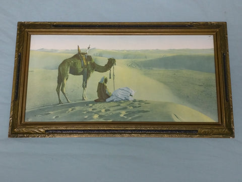 Prayer in the Desert Print 5060 Camel Middle East