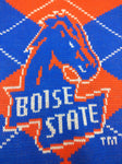 NEW Plaid Winter Scarf Boise State Broncos University BSU 2-Sided School Spirit Donegal Bay