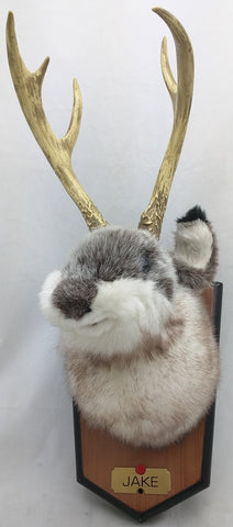 AS-IS Jackalope Jake Gemmy Jake Wall Mounted Singing Animated Novelty Toy Mancave Decor
