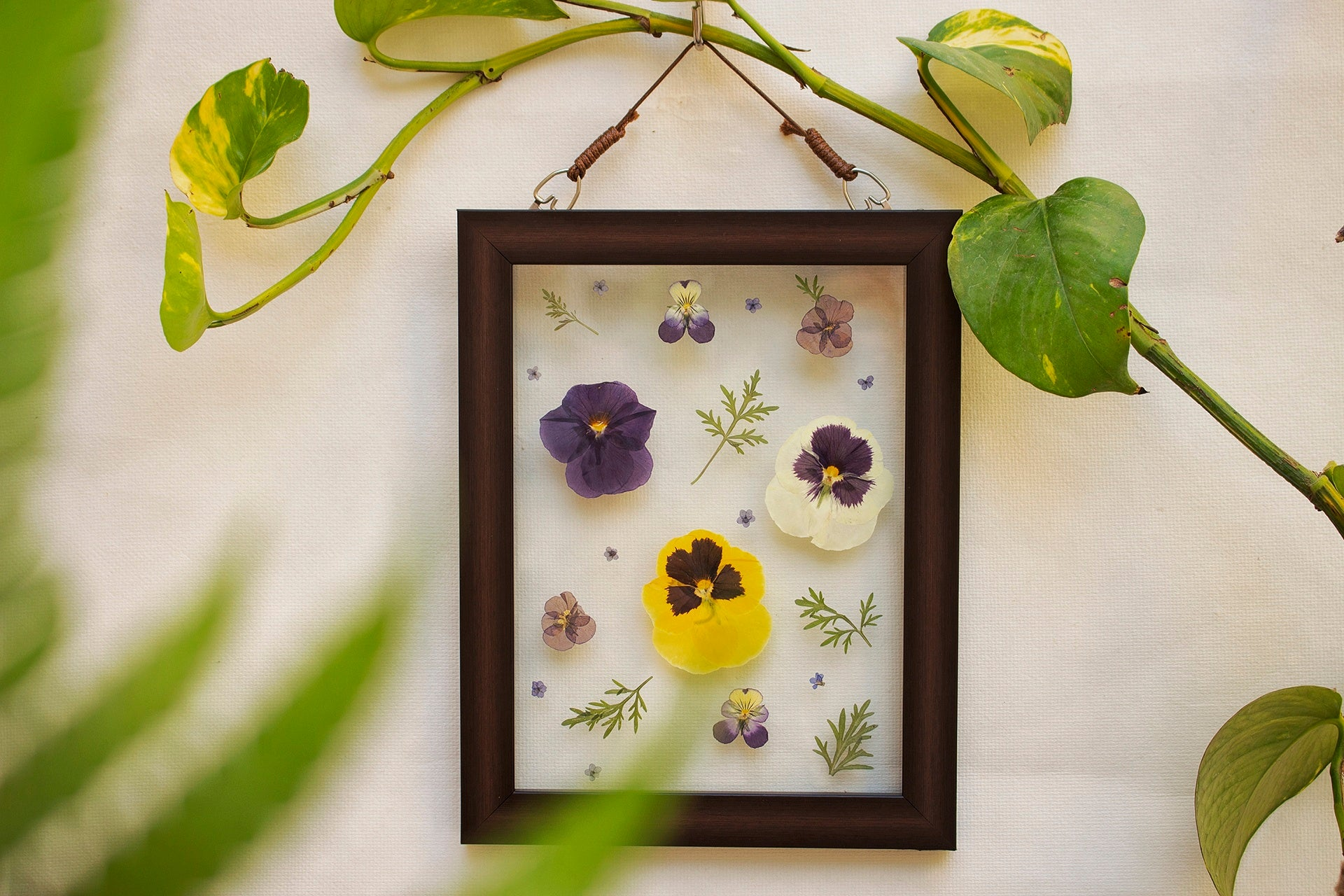 Wild Flower Dreams - Wall Frame