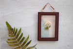 Lone White Beauty - Wall Frame