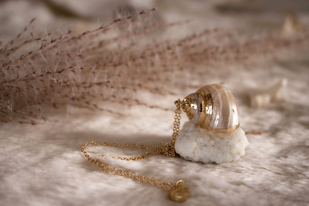 Ivory Tide Shell Necklace