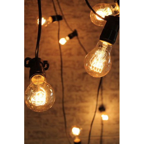 5m Lightbulb Twinkle Festoon Light