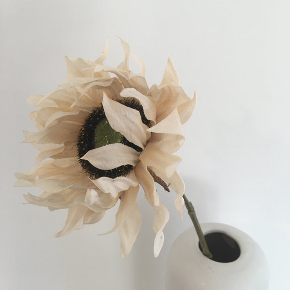 FAUX DRIED SUNFLOWER  IVORY