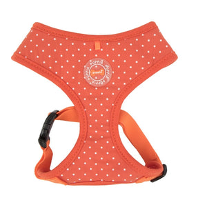 Dotty Harness Orange Medium