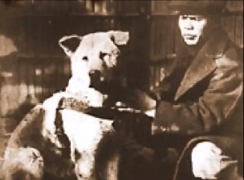 Hachiko and his dog - Perroow