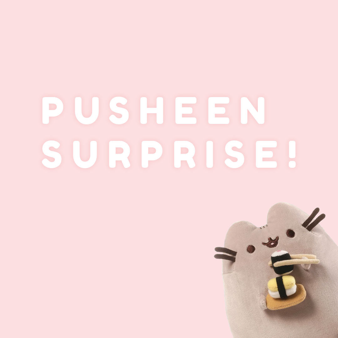 Pusheen Surprise Box | Toy Galeria Singapore