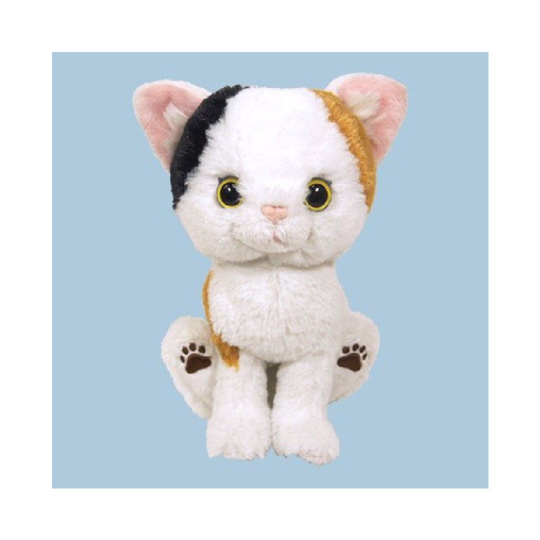 Sunlemon Kitten Calico Plush 5"