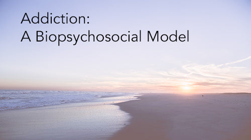 Addiction: A Biopsychosocial Model (Home Study Course-3 CEUs)