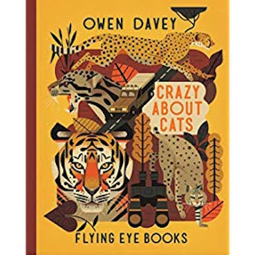 Crazy About Cats book cover - Author Owen Davey