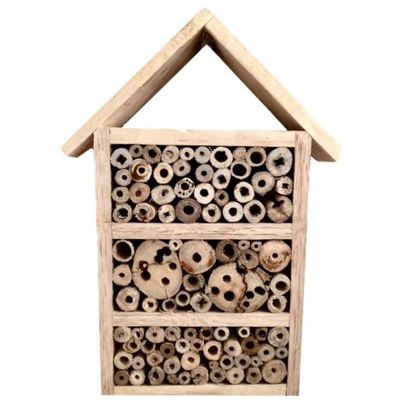 Papoose insect house