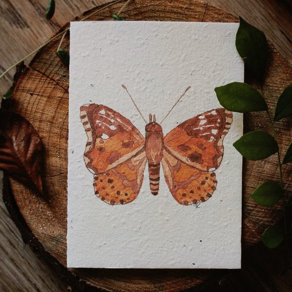Mama and Daisy plantable greeting card - Little Grow Butterfly
