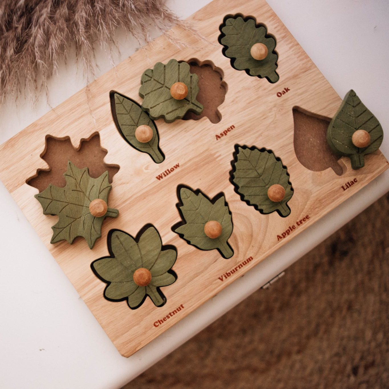 Qtoys Montessori Leaf Wooden Puzzle