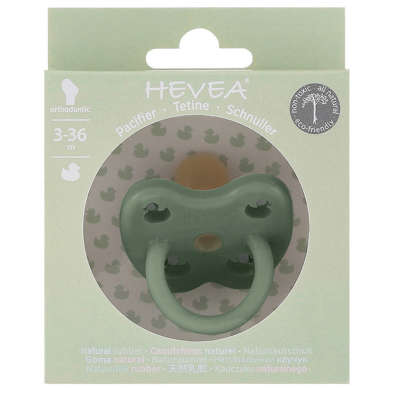 Packaging for Hevea natural rubber colour pacifier - orthodontic teat - moss green