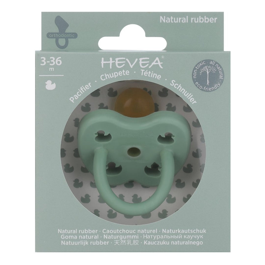 Natural Rubber Colour Pacifier - Orthodontic Teat - Pistachio