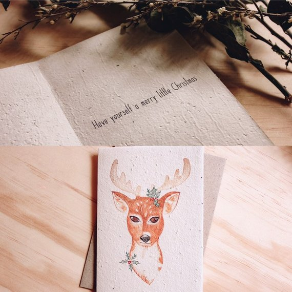 Mama and Daisy plantable greeting card - Christmas Reindeer