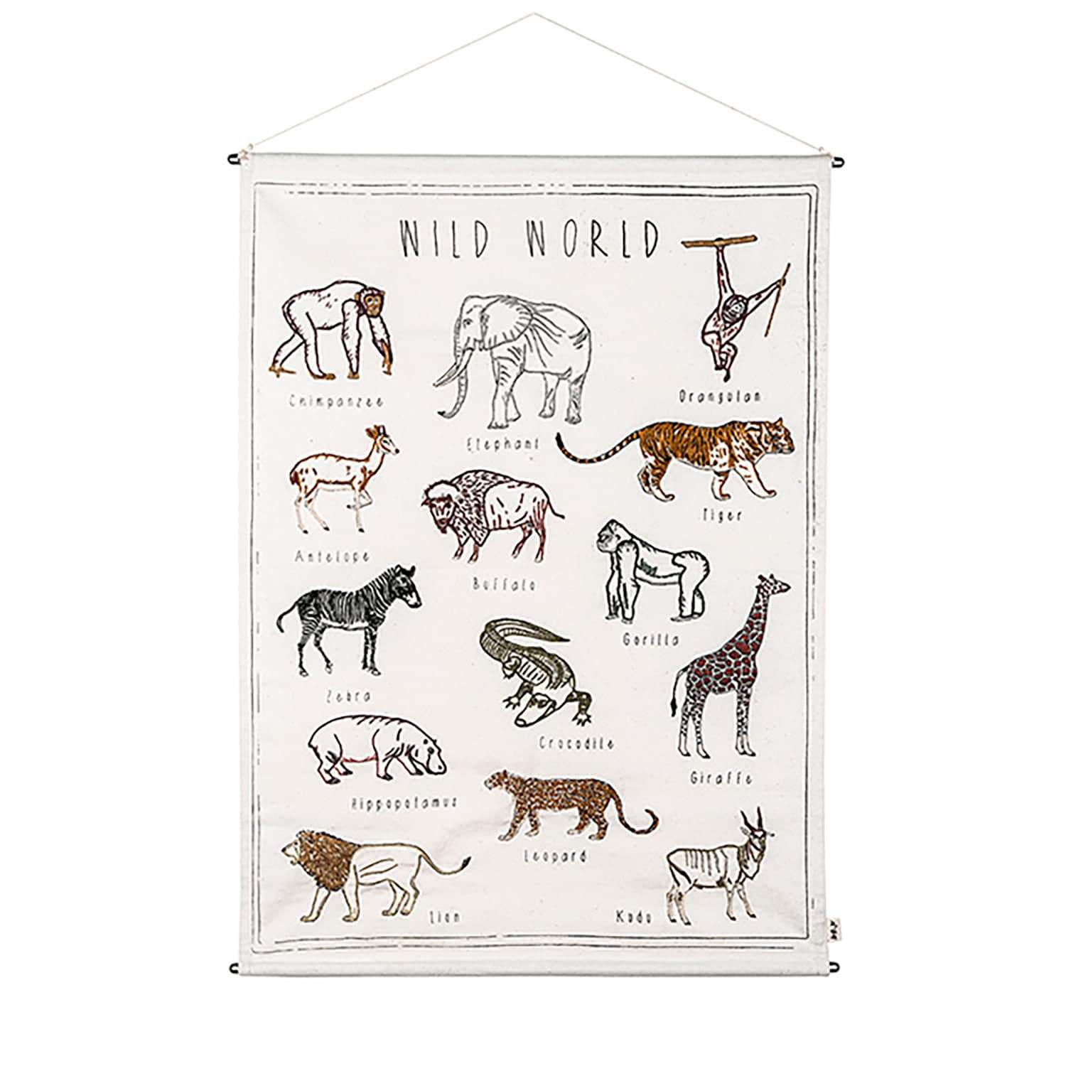Numero 74 School Poster Kit - Wild Animals