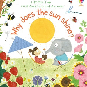 Book cover for Why Does The Sun Shine? - a Lift the Flap book