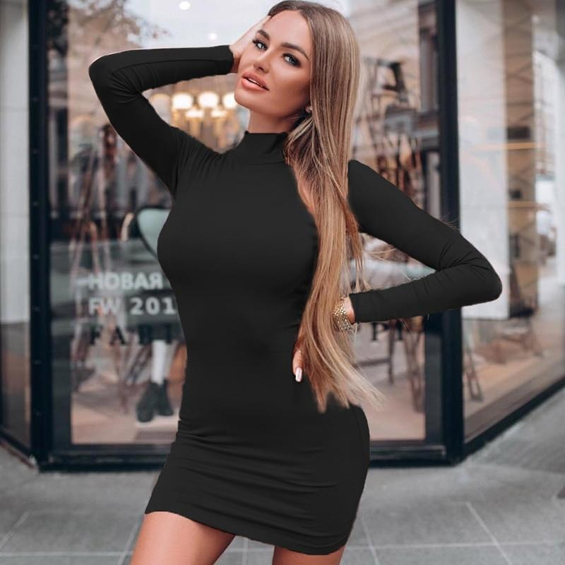 Charlotte Sexy Turtleneck Dress - At Boujee's