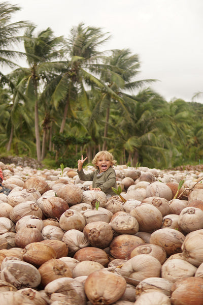 WHY WE'RE NUTS ABOUT COCONUTS