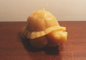 Carved Turtle Candle