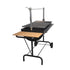 products/Outdoor-Barbecue-Hanging-Grill-Height-Adjustable-Charcoal_1.jpg