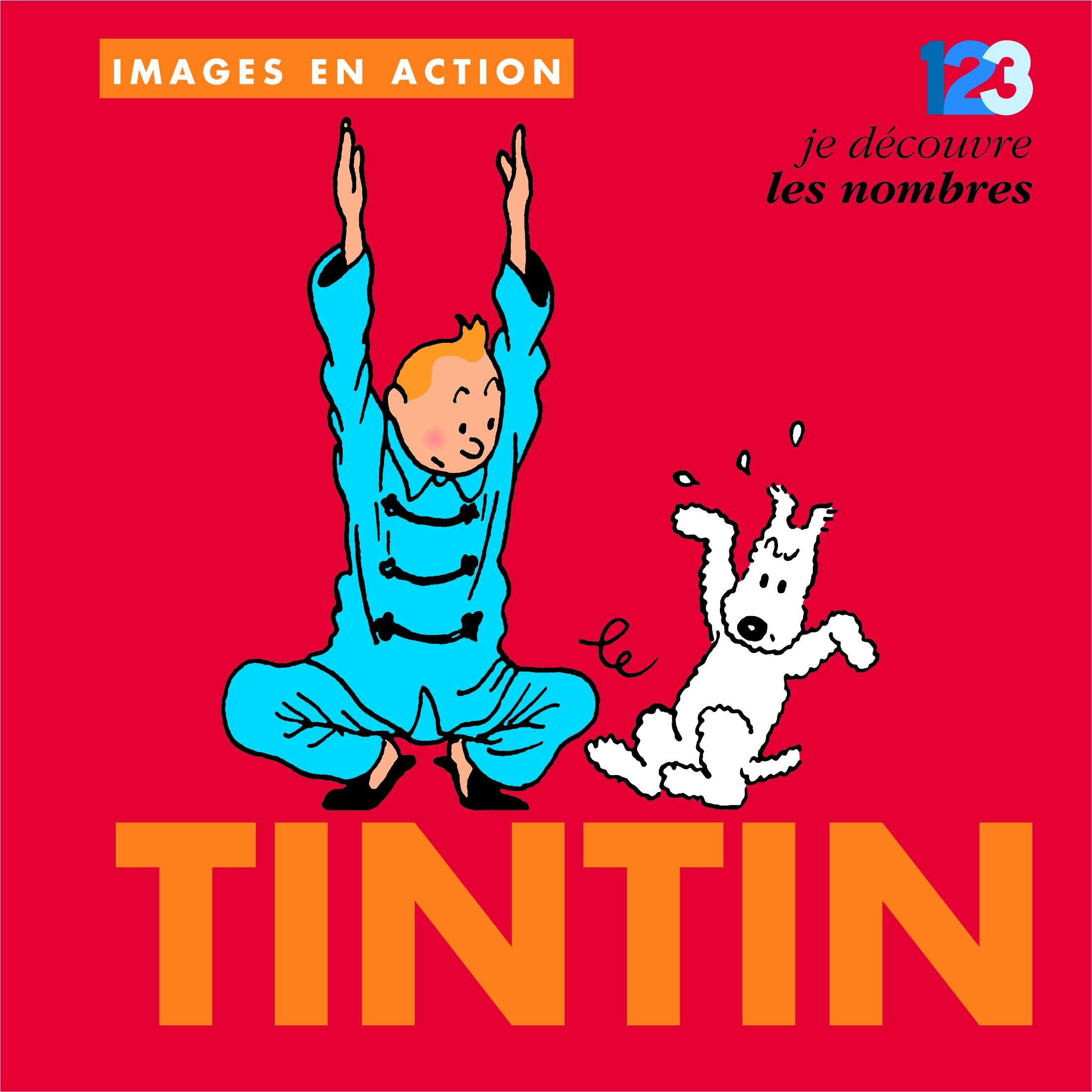 TINTIN BOOKS - IMAGES LES NOMBRES (FRENCH)
