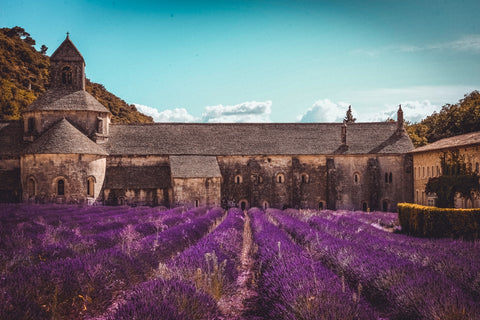 Step into Medieval Provence History (Pexel Image)