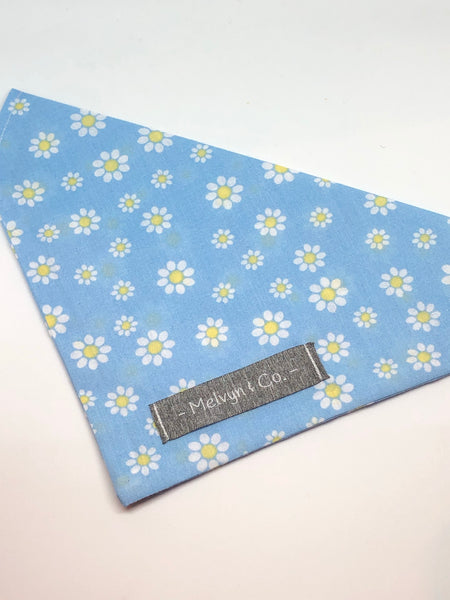 Daisy Field Blue