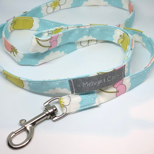 """Fruit Dreams"" Dog Lead"