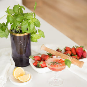 Kitchen Herb Garden with Glass Tumbler
