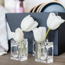 Load image into Gallery viewer, Acrylic Napkin Holders & Flower Vases (4)