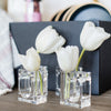 Acrylic Napkin Holders & Flower Vases (4)