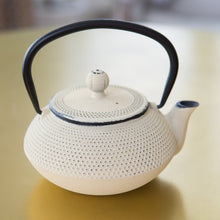 Load image into Gallery viewer, Cast Iron Teapot