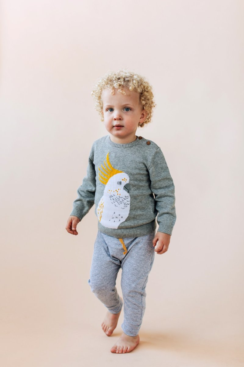 Angus The Cockatoo Knit Sweater