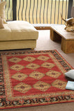 Jewel Shiraz Design 801 Red Rug