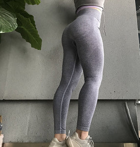 LA Seamless Leggings