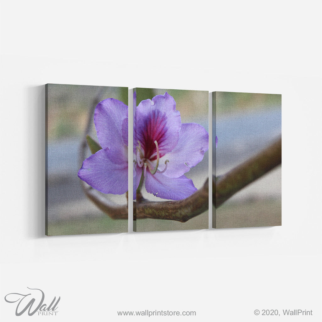 Purple Flower _3 Piece Split Canvas