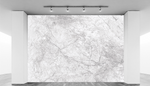 White Granite Abstract