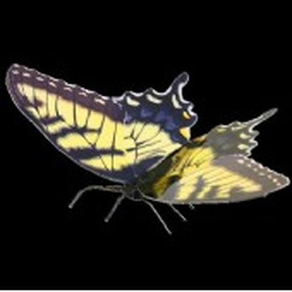 Metal Earth Tiger Swallowtail Butterfly