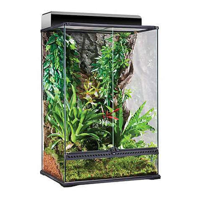 Exo Terra High Glass Terrarium 24x18x36 - Allans Pet Center