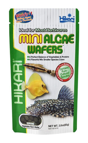 Hikari MINI Algae Wafers - Allans Pet Center