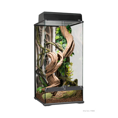 Exo Terra Terrarium Small X-Tall 18x18x36in - Allans Pet Center