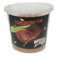 Flightless Fruitflys - Allans Pet Center