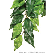 Exo-Terra Silk Jungle Plant (Ficus) - Allans Pet Center