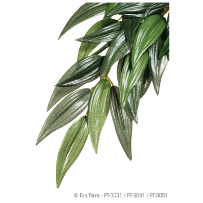 Exo-Terra Jungle Plant (Ruscus) - Allans Pet Center