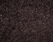 Black Oil Sunflower Seed (volkman) - Allans Pet Center